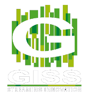 Global Internet Streaming Services